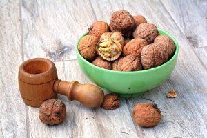 walnut-1710571_1920
